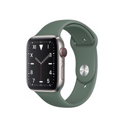 Apple Watch Series 5 Silver Titanium / Green Band (LTE) 40mm