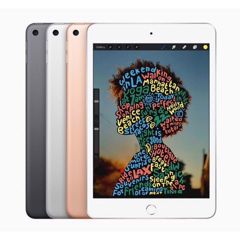 iPad Mini 5 4G - 256GB (Công Ty)