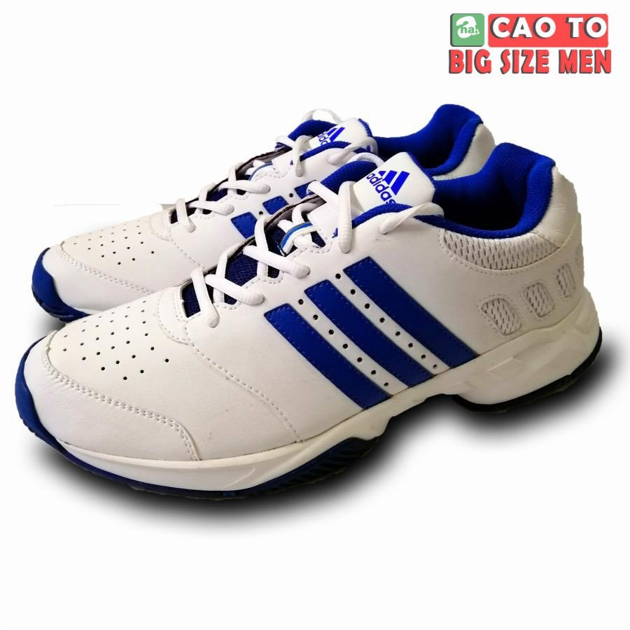 Giày tennis Adidas While bigsize