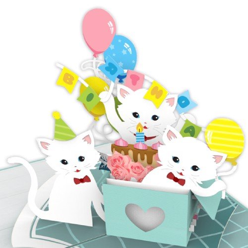 Cat-in-a-box-birthday-pop-up-card-model
