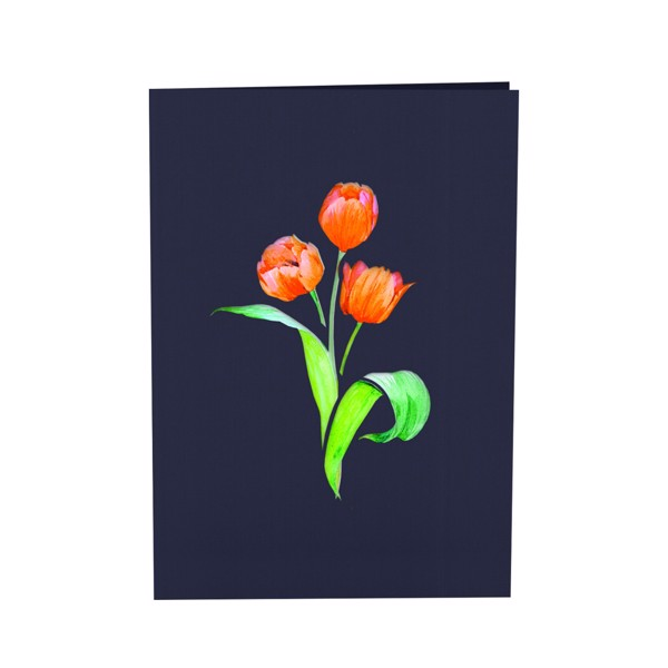 thiep-pop-up-hoa-tulip-model