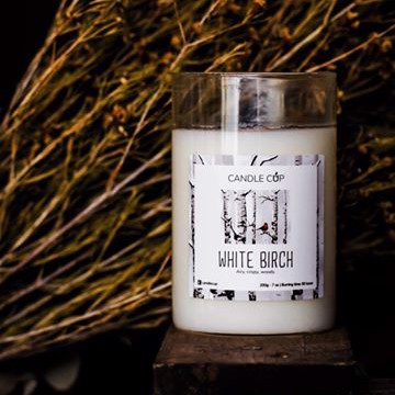 Candle cup 100g - White Birch