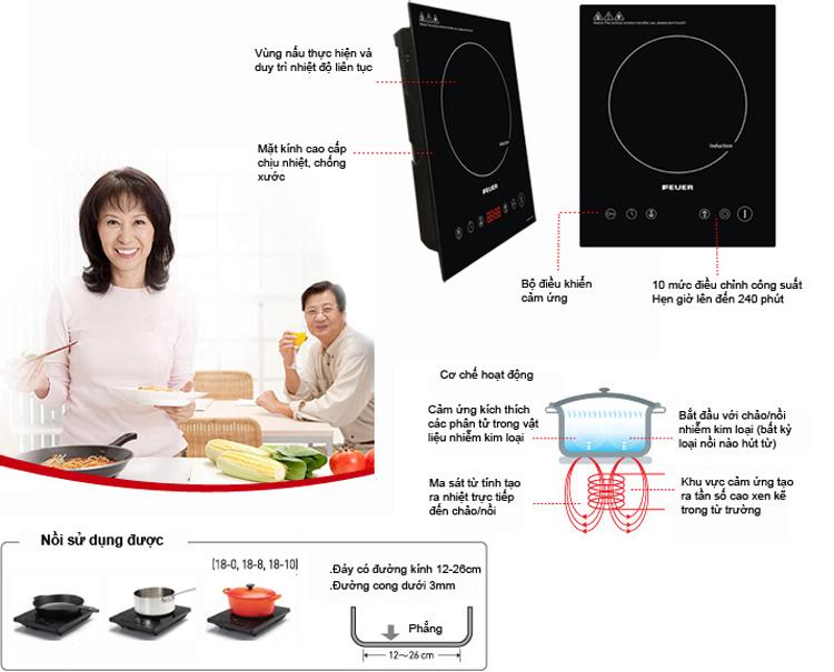 Đặc điểm của bếp từFeuerFE-A73