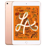 IPad Mini 5 256GB - New