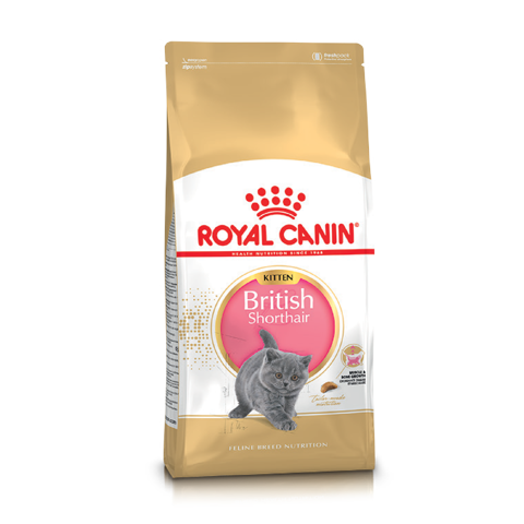 Royal Canin British Shorhair Kitten