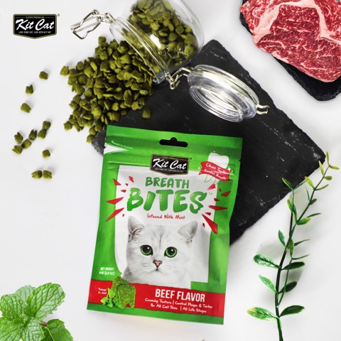 Kit Cat Breath Bites Beef 60gr
