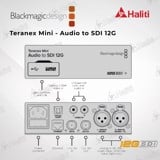 Teranex Mini - Audio to SDI 12G