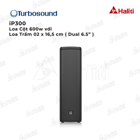 Loa TURBOSOUND iP300
