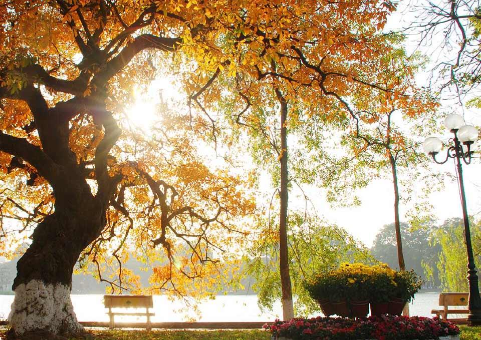 Những khoảnh khắc, hình ảnh đẹp đến nao lòng của mùa thu Hà Nội
