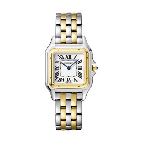 Cartier Panthère de Cartier Medium Model Yellow And  Steel
