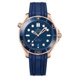 Omega Seamaster Diver 300m Gents' Collection 210.62.42.20.03.001