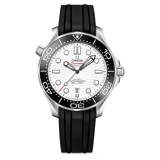 Omega Seamaster Diver 300m Gents' Collection 210.32.42.20.04.001