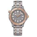 Omega Seamaster Diver 300m Gents' Collection 210.60.42.20.99.001