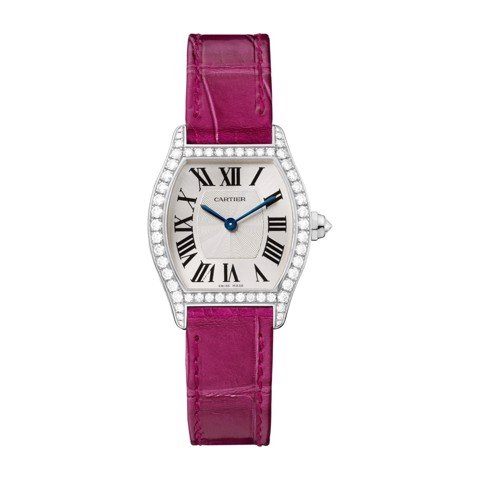 Cartier Tortue Small White Gold Diamonds Leather