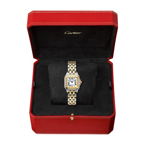 Cartier Panthère de Cartier Small Model Yellow Gold And Steel