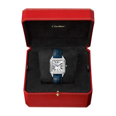 Cartier Santos Dumont Small Steel Leather