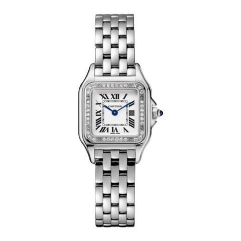 Cartier Panthère de Cartier Small Model Steel Diamonds