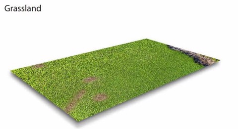 Grass Land Gaming Mat (1200x1200 mm)