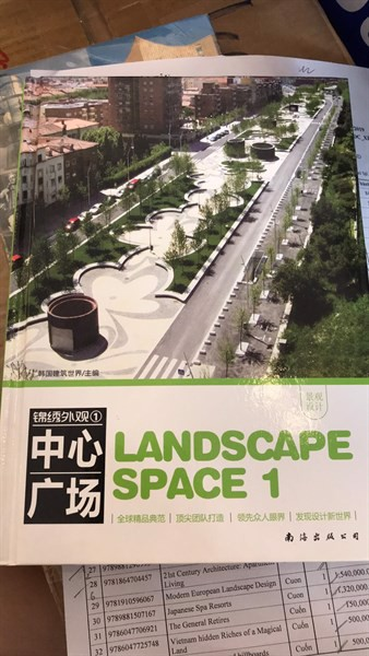 Landscape Space 1: Central plaza