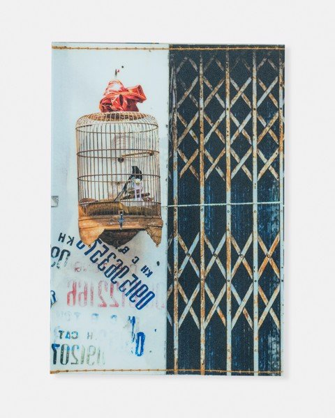 Bird Cage Passport Cover