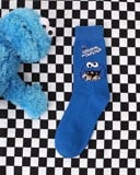 Seasame Street long socks
