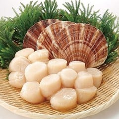 MF-Sea Scallops 1kg