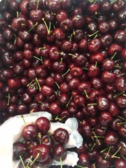 FRI-Cherry USA (Cherry Mỹ)