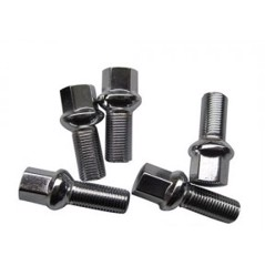 Stainless steel Wheel bolt