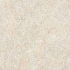 Gạch Granite Eco-48502