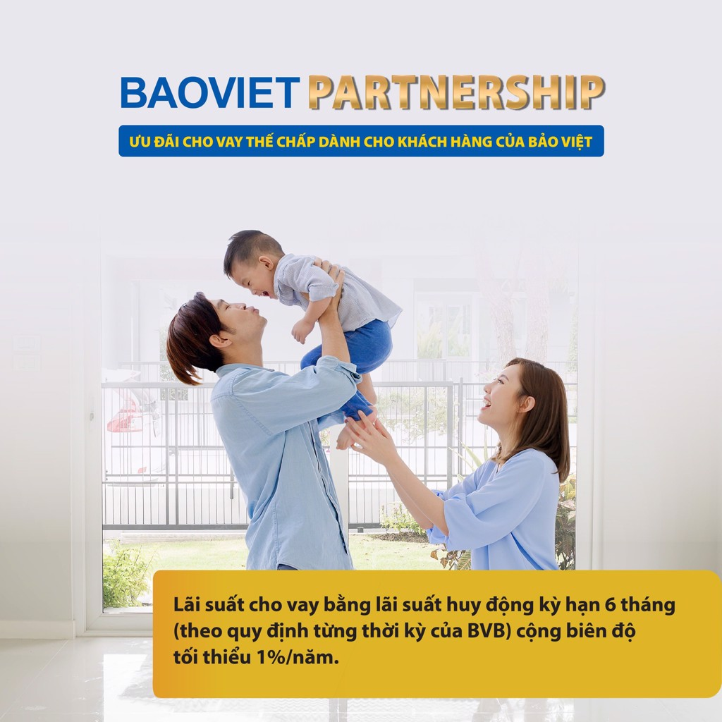BaoViet Partnership