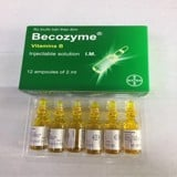 Becozyme Bayer (H/12O/2Ml) (Date Cận)