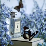 Jo Malone Wild Bluebell Cologne For Women