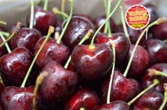 Cherry Chile size 30_32mm