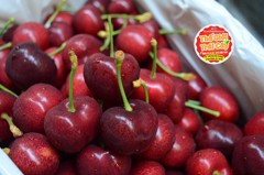 Cherry Lani New Zealand Premium