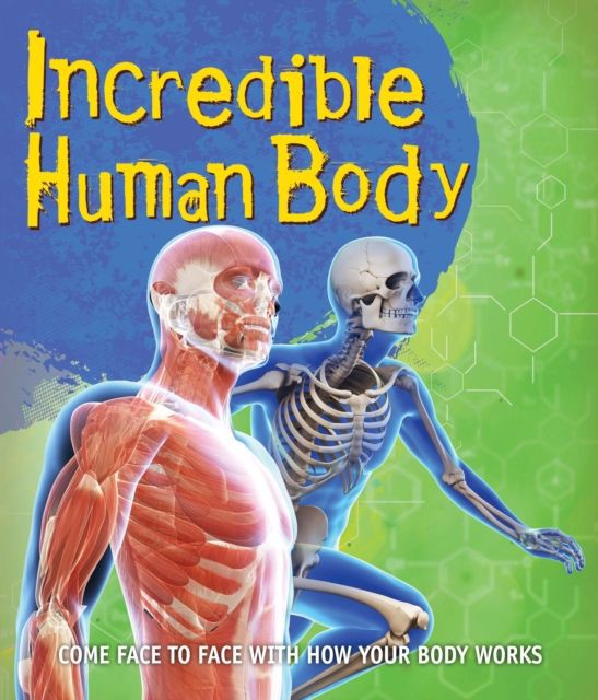 Fast Facts Incredible Human Body