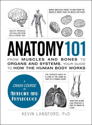 Anatomy 101: From Muscles and Bones to Organs and Systems,
