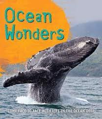 Fast Facts Ocean Wonders