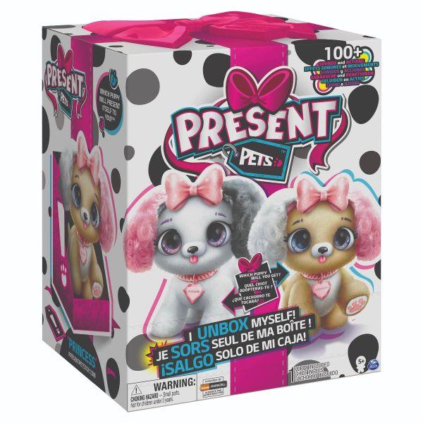 Hộp quà Present Pets  cún cưng poodle đáng yêu